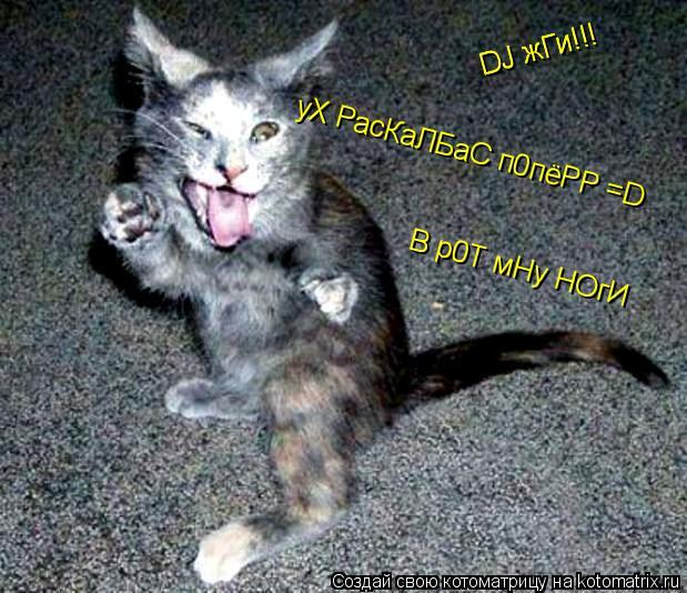 Котоматрица: DJ жГи!!! DJ жГи!!! уХ РасКаЛБаС п0пёРР =D  В р0Т мНу НОгИ