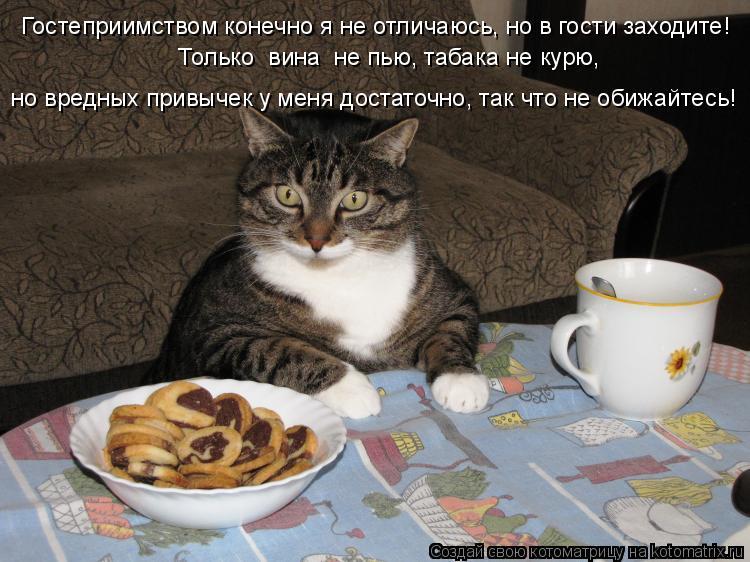 Котоматрица: Гостеприимством конечно я не отличаюсь, но в гости заходите!     Только  вина  не пью, табака не курю,   но вредных привычек у меня достаточно, т