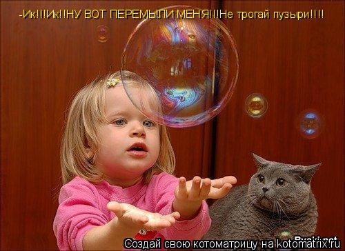 Котоматрица: -Ик!!!Ик!!НУ ВОТ ПЕРЕМЫЛИ МЕНЯ!!!Не трогай пузыри!!!!