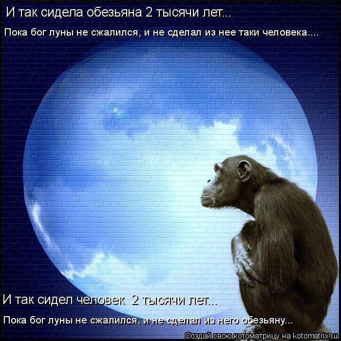 Котоматрица: И так сидела обезьяна 2 тысячи лет... Пока бог луны не сжалился, и не сделал из нее таки человека.... Пока бог луны не сжалился, и не сделал из не