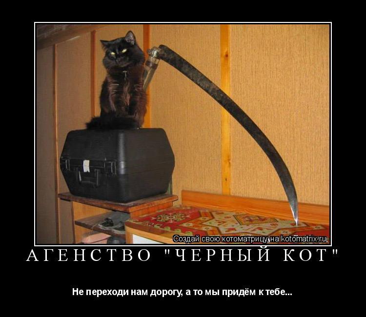 """Котоматрица: Агенство """"Чёрный Кот"""" Не переходи нам дорогу, а то мы придём к тебе..."""