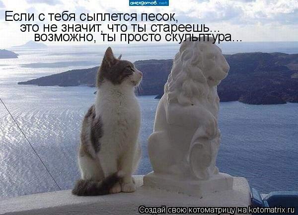 Котоматрица: Если с тебя сыплется песок, это не значит, что ты стареешь... возможно, ты просто скульптура...