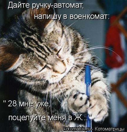 """Котоматрица: Дайте ручку-автомат, напишу в военкомат: """" 28 мне уже,  поцелуйте меня в Ж..."""""""