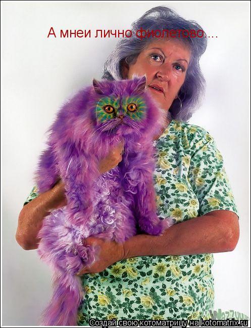 Котоматрица: А мнеи лично фиолетово....