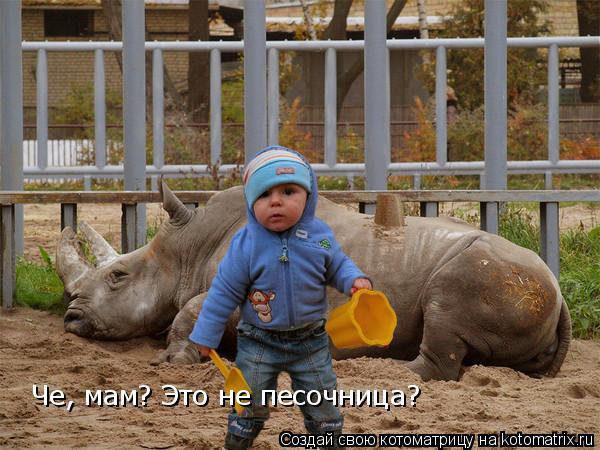 Котоматрица: Че, мам? Это не песочница?
