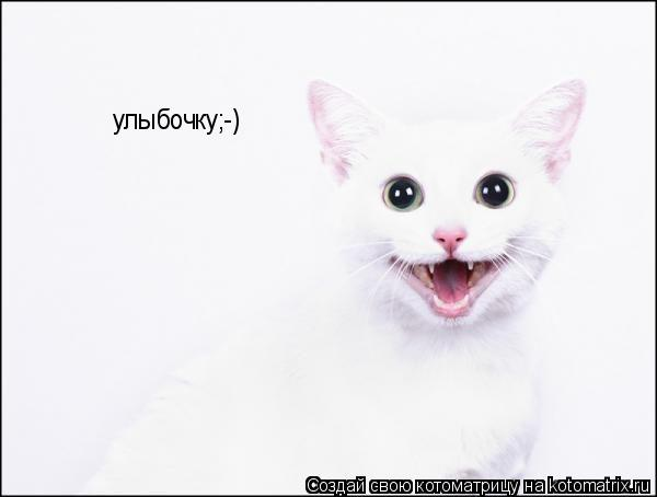 Котоматрица: улыбочку;-)