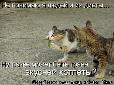 Котоматрица: Не понимаю я людей и их диеты... Ну, разве может быть трава  вкусней котлеты?