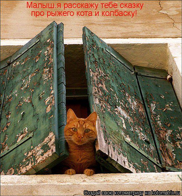 Котоматрица: Малыш.я расскажу тебе сказку про рыжего кота и колбаску!