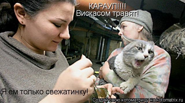 Котоматрица: КАРАУЛ!!!! Вискасом травят! Я ем только свежатинку!