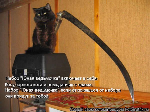 """Котоматрица: Набор """"Юная ведьмочка"""" включает в себя: Косу,черного кота и чемоданчик с ядами. Набор """"Юная ведьмочка"""",если откажешься от набора  они придут з"""