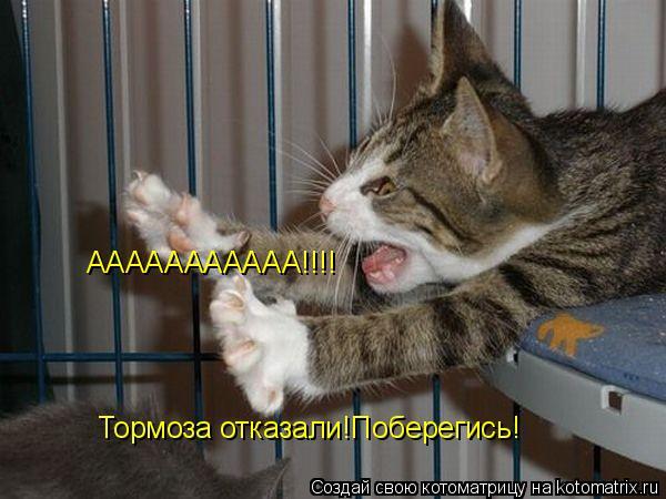 Котоматрица: ААААААААААА!!!! Тормоза отказали!Поберегись!