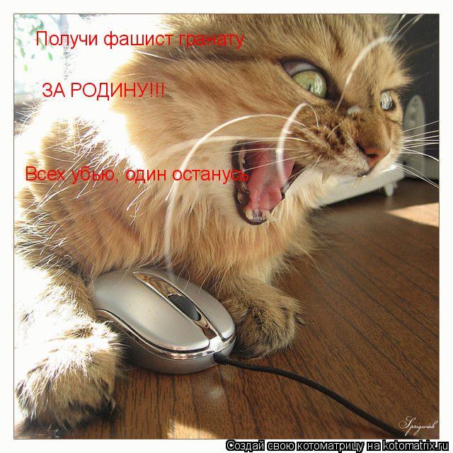 Котоматрица: Получи фашист гранату ЗА РОДИНУ!!! Всех убью, один останусь