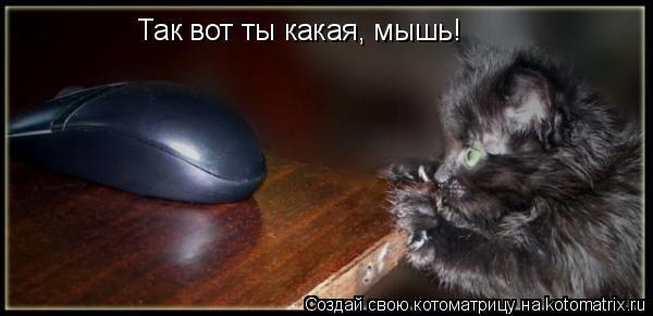 Котоматрица: Так вот ты какая, мышь!