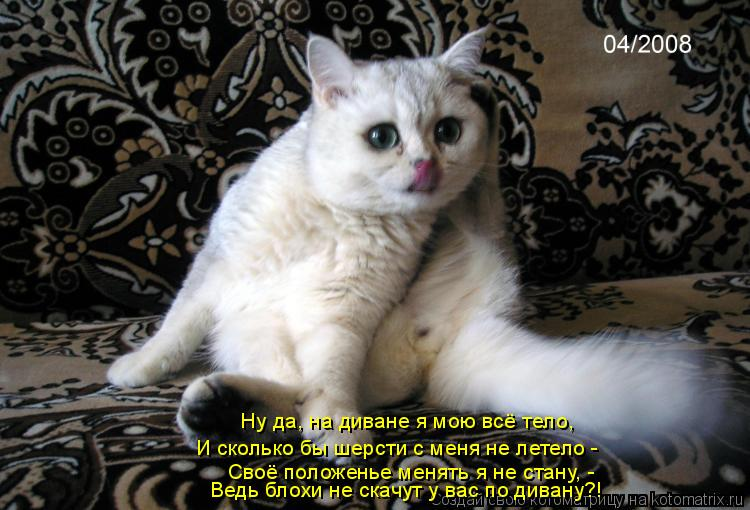 Котоматрица: Ну да, на диване я мою всё тело,  И сколько бы шерсти с меня не летело - Своё положенье менять я не стану, - Ведь блохи не скачут у вас по дивану?!