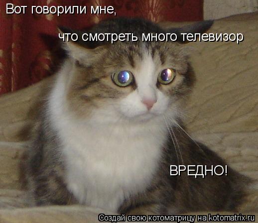 Котоматрица: Вот говорили мне, что смотреть много телевизор ВРЕДНО!