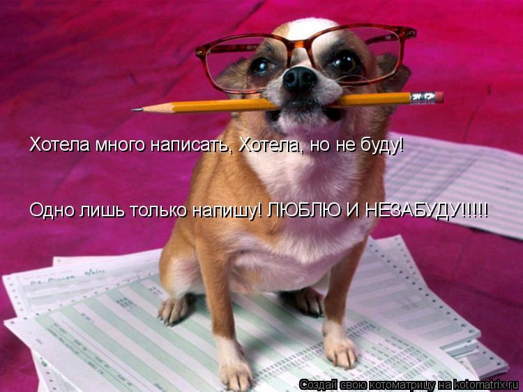 Котоматрица: Хотела много написать, Хотела, но не буду!  Одно лишь только напишу! ЛЮБЛЮ И НЕЗАБУДУ!!!!!