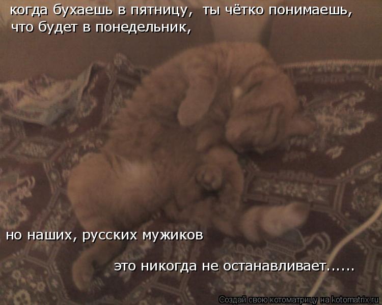 Котоматрица: когда бухаешь в пятницу, ты чётко понимаешь, что будет в понедельник, но наших, русских мужиков это никогда не останавливает......