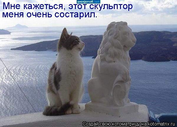 Котоматрица: Мне кажеться, этот скульптор меня очень состарил.