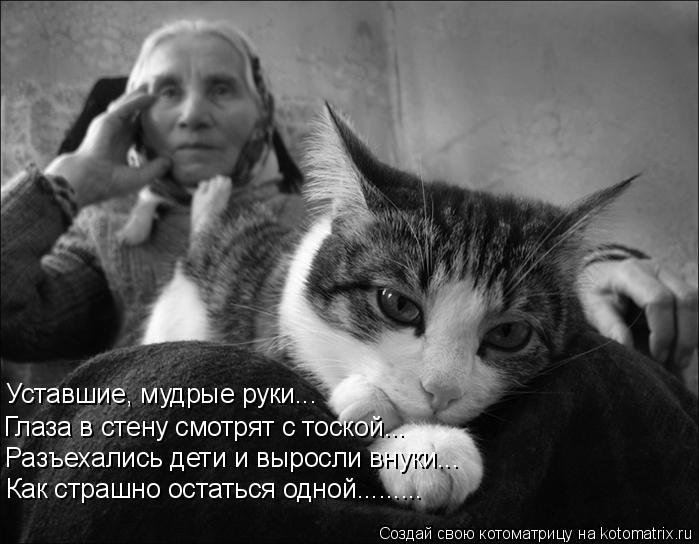 Котоматрица: Уставшие, мудрые руки... Глаза в стену смотрят с тоской... Разъехались дети и выросли внуки... Как страшно остаться одной.........