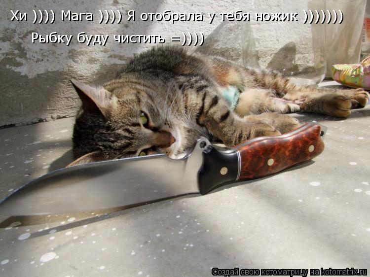 Котоматрица: Хи )))) Мага )))) Я отобрала у тебя ножик ))))))) Рыбку буду чистить =))))