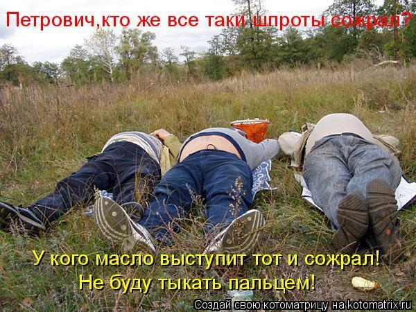 Котоматрица: Петрович,кто же все таки шпроты сожрал? У кого масло выступит тот и сожрал! Не буду тыкать пальцем!