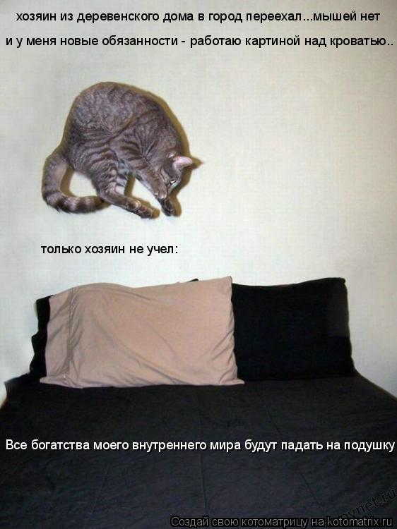Котоматрица: хозяин из деревенского дома в город переехал...мышей нет и у меня новые обязанности - работаю картиной над кроватью.. только хозяин не учел: В