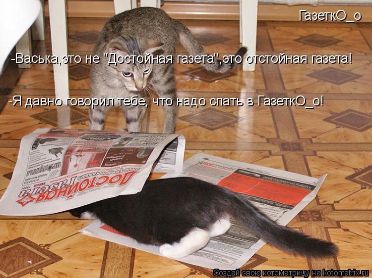 """Котоматрица: -Васька,это не """"Достойная газета"""",это отстойная газета!  -Я давно говорил тебе, что надо спать в ГазеткО_о! ГазеткО_о"""