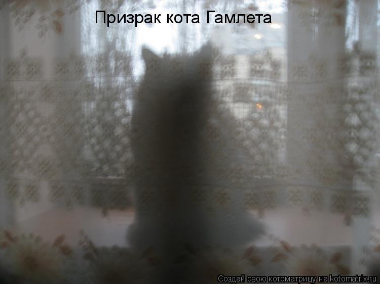 Котоматрица: Призрак кота Гамлета