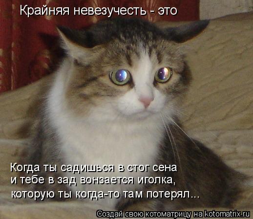 Котоматрица: Крайняя невезучесть - это Когда ты садишься в стог сена  и тебе в зад вонзается иголка, которую ты когда-то там потерял...