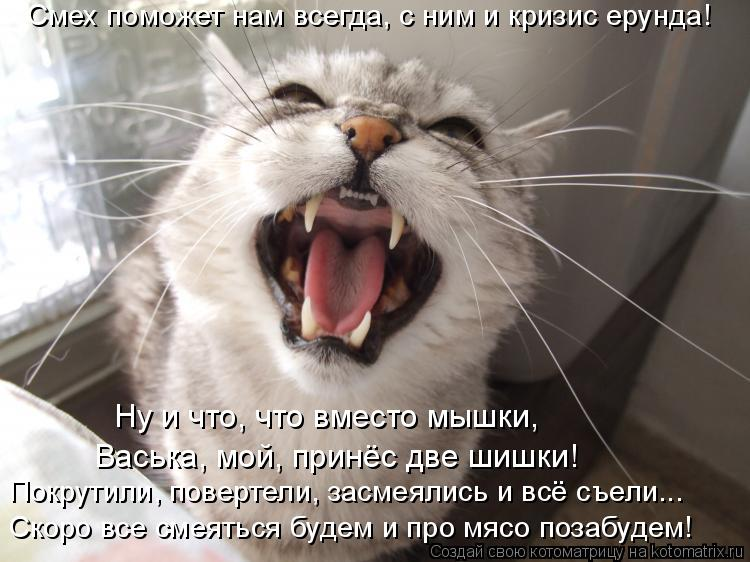 Котоматрица: Смех поможет нам всегда, с ним и кризис ерунда! Скоро все смеяться будем и про мясо позабудем! Покрутили, повертели, засмеялись и всё съели...