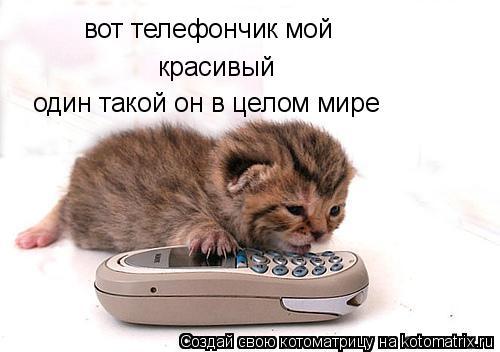 Котоматрица: вот телефончик мой красивый один такой он в целом мире