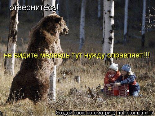 Котоматрица: отвернитесь! не видите,медведь тут нужду справляет!!!