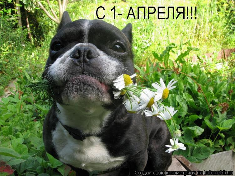С 1- АПРЕЛЯ!!!