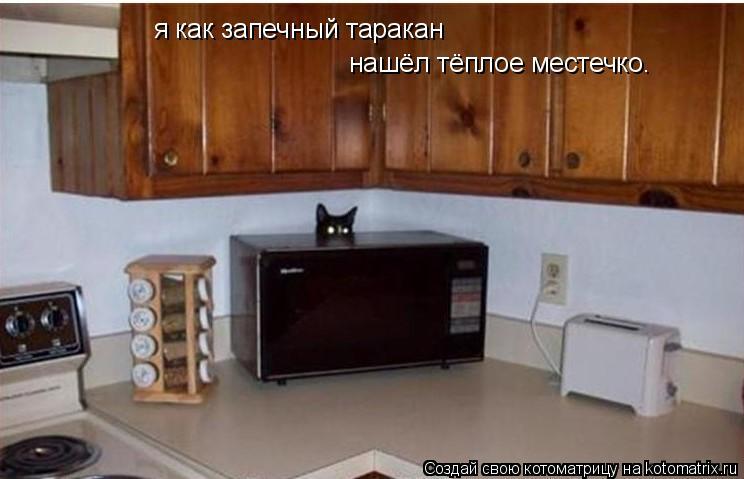 Котоматрица: я как запечный таракан  нашёл тёплое местечко.