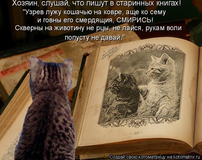 """Котоматрица: Хозяин, слушай, что пишут в старинных книгах!  """"Узрев лужу кошачью на ковре, аще ко сему  и говны его смердящия, СМИРИСЬ!  Скверны на животину н"""