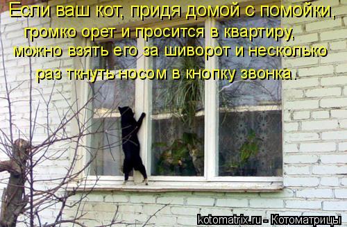 Котоматрица: Если ваш кот, придя домой с помойки,  можно взять его за шиворот и несколько  раз ткнуть носом в кнопку звонка. громко орет и просится в кварт
