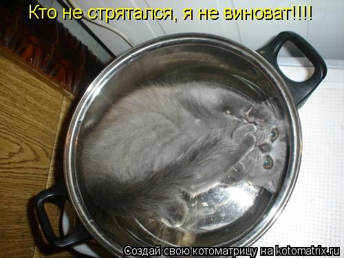 Котоматрица: Кто не стрятался, я не виноват!!!!