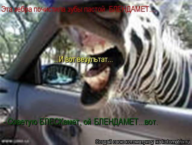 Котоматрица: Эта зебра почистила зубы пастой  БЛЕНДАМЕТ.... ...И вот везультат... - Советую БЛЕСКамет, ой БЛЕНДАМЕТ...вот.