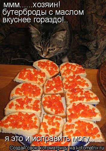 Котоматрица: ммм......хозяин! бутерброды с маслом  вкуснее гораздо!.. я это и исправить могу...