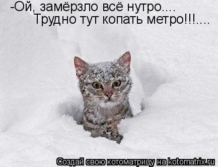 Котоматрица: -Ой, замёрзло всё нутро.... Трудно тут копать метро!!!....