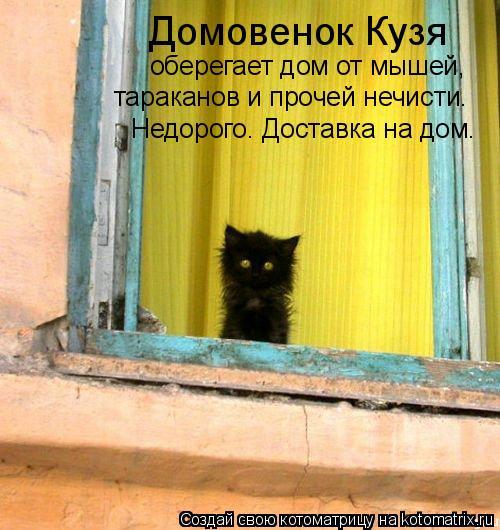 Котоматрица: Домовенок Кузя оберегает дом от мышей,  тараканов и прочей нечисти. Недорого. Доставка на дом.