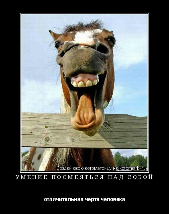 Котоматрица: Умение посмеяться над собой отличительная черта человека