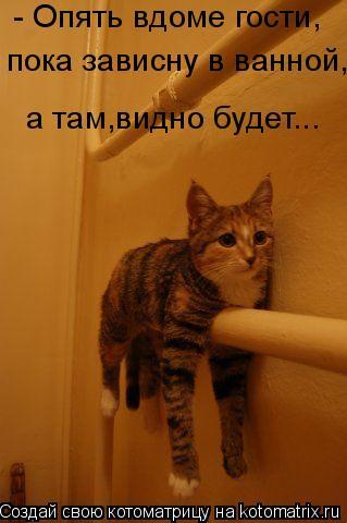 Котоматрица: - Опять вдоме гости, пока зависну в ванной, а там,видно будет...