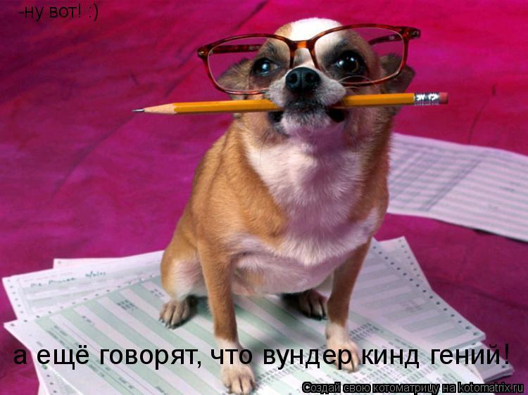 Котоматрица: -ну вот! :) а ещё говорят, что вундер кинд гений!