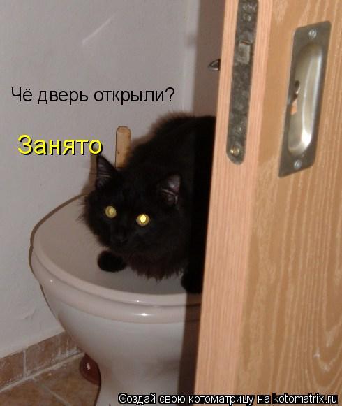 Котоматрица: Чё дверь открыли? Занято
