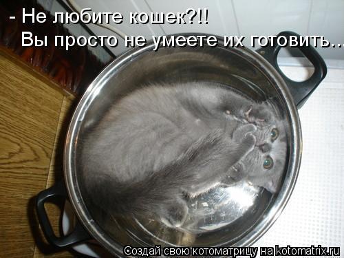 Котоматрица: - Не любите кошек?!! Вы просто не умеете их готовить...