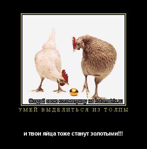 Котоматрица: Умей выделиться из толпы и твои яйца тоже станут золотыми!!!