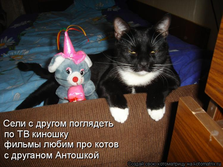 Котоматрица: Сели с другом поглядеть по ТВ киношку фильмы любим про котов с друганом Антошкой