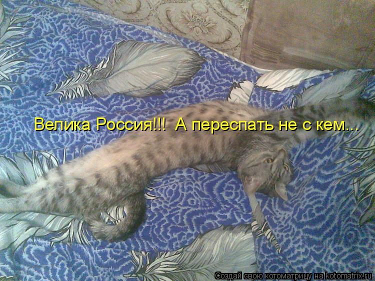 Котоматрица: Велика Россия!!!  А переспать не с кем...