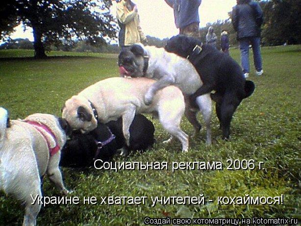 Котоматрица: Социальная реклама 2006 г. Украине не хватает учителей - кохаймося!